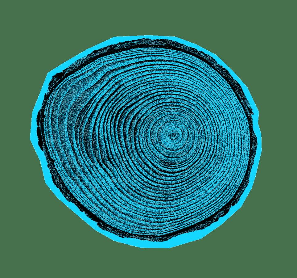 tree-rings@2x